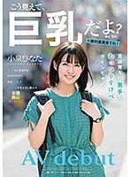 小泉ひなたのデビュー作