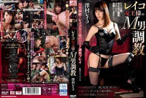 FANZAで販売されている澤村レイコのAV動画の画像